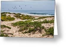 Carpinteria State Beach Greeting Card