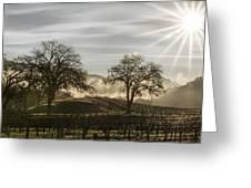 Wine Country Sunrise Greeting Card
