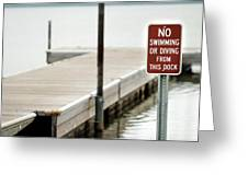 No Swimming Or Diving Greeting Card