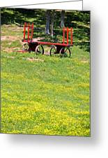 None Of Your Red Wagon Greeting Card