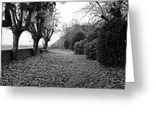 Normandy Black And White Greeting Card