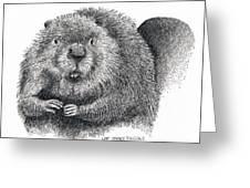 North American Beaver Greeting Card