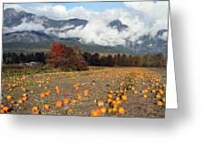North Arm Farm Pumpkin Season Pemberton B.c Canada Greeting Card