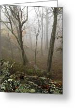 North Carolina Foggy Mountain  Greeting Card