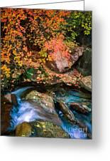 North Creek Fall Foliage Greeting Card