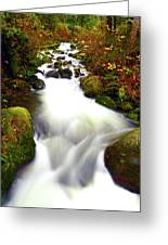 North Fork Of Wallace Greeting Card