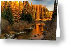 North Fork Yaak River Fall Colors #1 Greeting Card