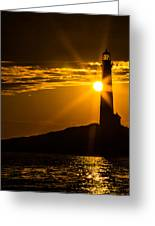 North Light Sunflare Greeting Card