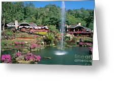 North Of Chiang Mai Greeting Card