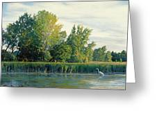 North Of The Grade-great Egret Greeting Card