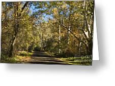 North Park Drive Greeting Card