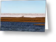 North Slope Greeting Card