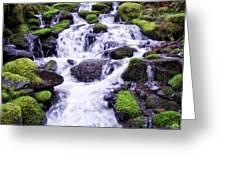 North Umpqua Wild And Scenic River Greeting Card