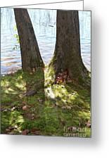 North Woods Lake One Greeting Card