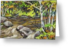 Northerm Stream Woodland Created By Richard T Pranke Greeting Card