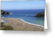 Northern California Coast Greeting Card