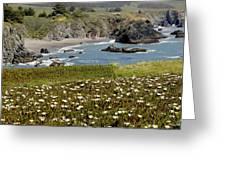 Northern California Coast Scene Greeting Card