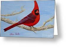 Northern Cardinal 2 Greeting Card