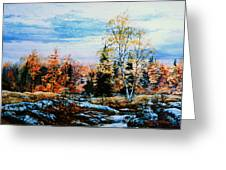 Northern Gold Greeting Card