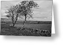 Northern Ireland 18 Greeting Card