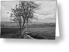Northern Ireland 19 Greeting Card