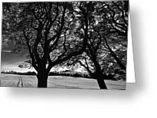 Northern Ireland 45 Greeting Card