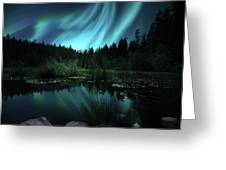Northern Lights Over Lily Pond Greeting Card
