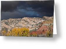 Northern Uintas Autumn Greeting Card