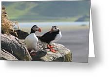 Northern Unique Bird Greeting Card