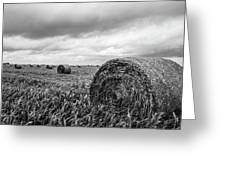 Nostalgia - Hay Bales In Field In Black And White Greeting Card