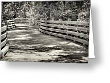 Nostalgic Pathway Greeting Card