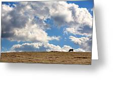 Not A Cow In The Sky Greeting Card