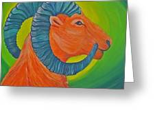 Not A Dull Sheep Greeting Card by Amy Reisland-Speer