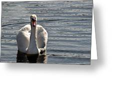 Not Another Swan Greeting Card
