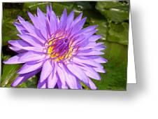 Purple Smiles Greeting Card