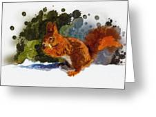 Not Much Goes On In The Mind Of A Squirrel Greeting Card