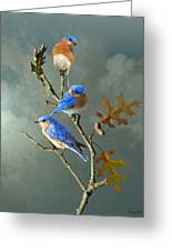 Nothing But Bluebirds Greeting Card