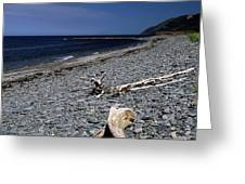 Nova Scotia Pebble Beach Greeting Card