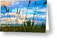 November Day At The Beach In Florida Greeting Card by Susanne Van Hulst