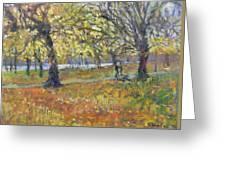 November In Hyde Park Greeting Card