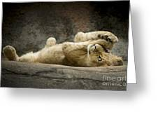 Now I Lay Me Down To Sleep Greeting Card