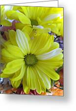 Now It Is Time For Spring Greeting Card