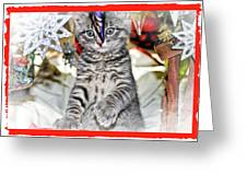 Now Where Did That Ornament Go I Just Saw It A Second Ago Greeting Card