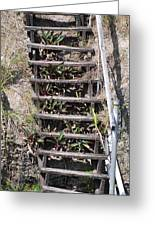 Nowhere Stairs Greeting Card
