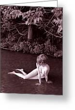 Nude In Jack Creek Greeting Card