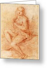 Nude Seated Woman Playing A Lute Greeting Card