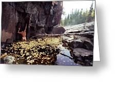 Nude Standing In A Leaf Pool  Greeting Card