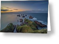 Nugget Point Greeting Card