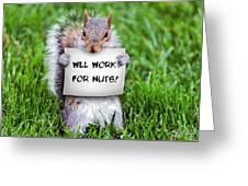 Nutty Squirrel Greeting Card