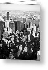 Nyc Bw Greeting Card